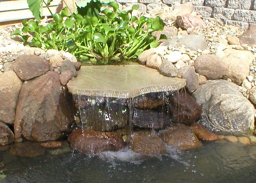 Bickal koi farm koi pond consultation lisbon iowa for Diy small pond with waterfall